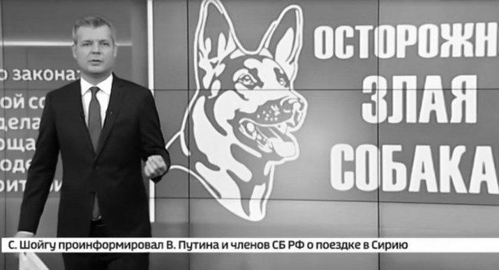 Новый закон вызвал вопросы у Российской кинологической федерации — Россия 24