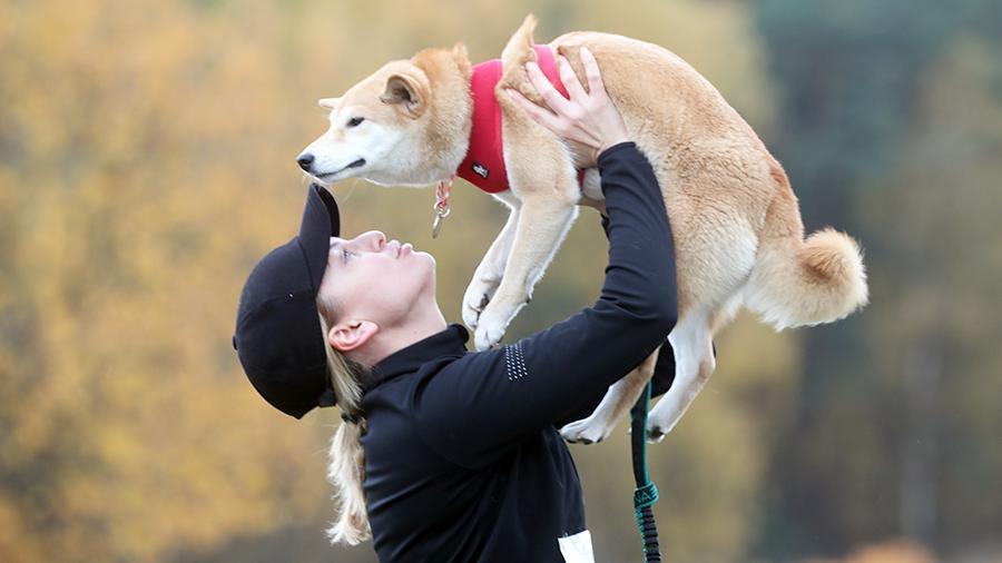 Кинологи раскритиковали идею ввести налог на собак